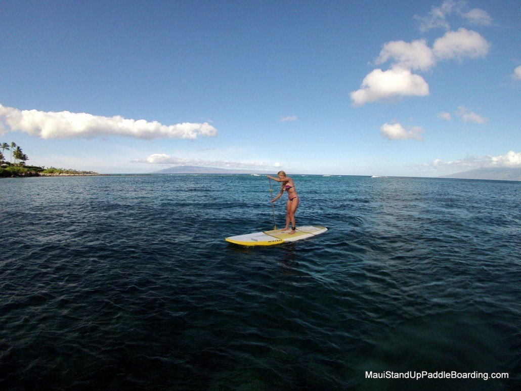 Maui Stand Up Paddle Boarding Stand Up Paddle Maui