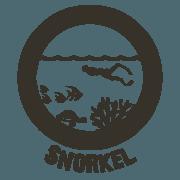Snorkel Tour Icon